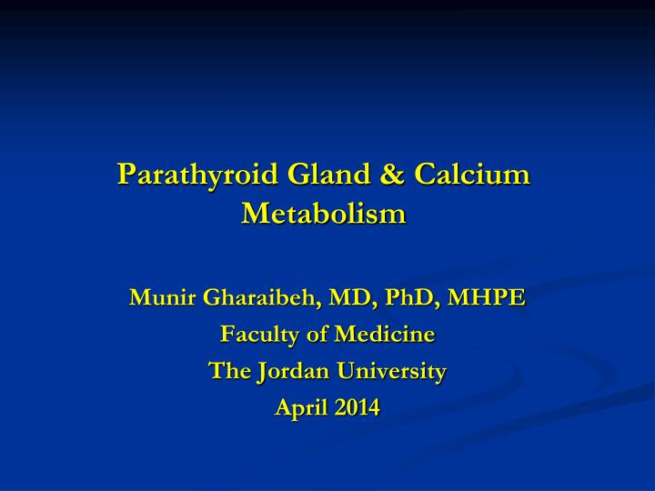 Parathyroid gland calcium metabolism