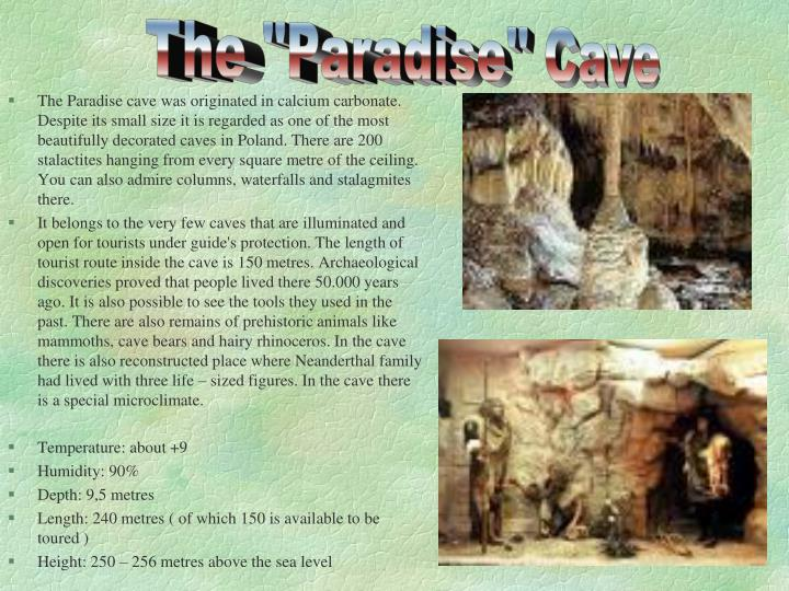 """The """"Paradise"""" Cave"""