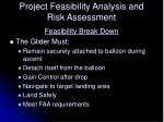 project feasibility analysis and risk assessment