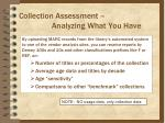 collection assessment analyzing what you have