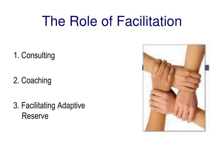 The Role of Facilitation