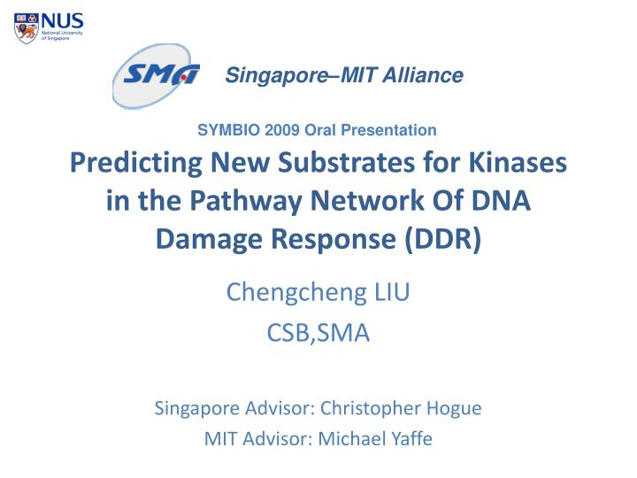 predicting new substrates for kinases in the pathway network of dna damage response ddr n.