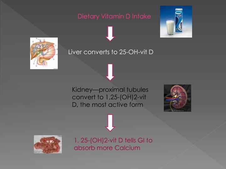 Dietary Vitamin D Intake
