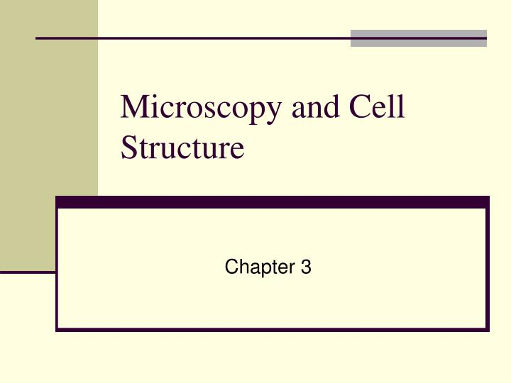 microscopy and cell structure n.