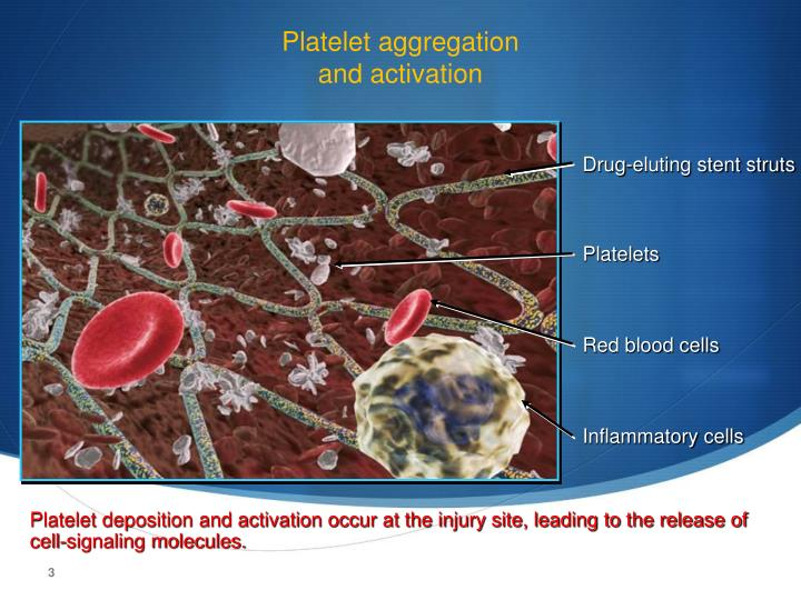 Platelet aggregation and activation