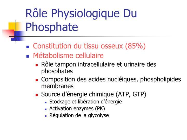 Rôle Physiologique Du Phosphate