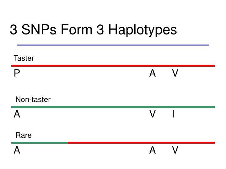 3 SNPs Form 3 Haplotypes