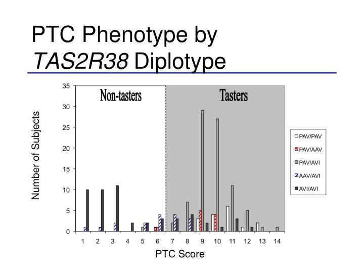 PTC Phenotype by