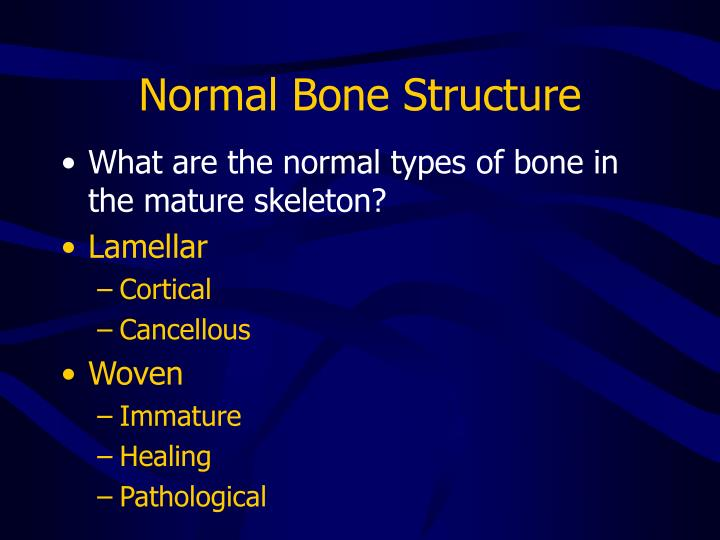 Normal bone structure