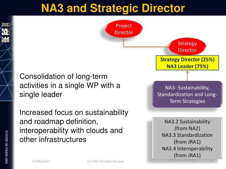 NA3 and Strategic Director