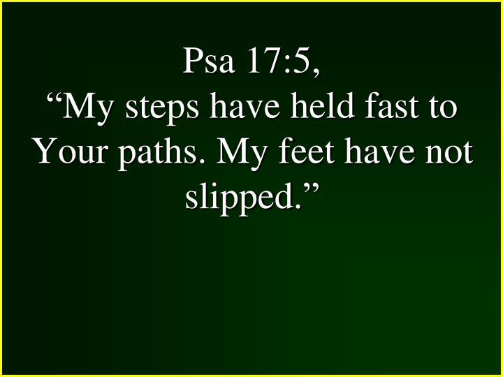 Psa 17:5,