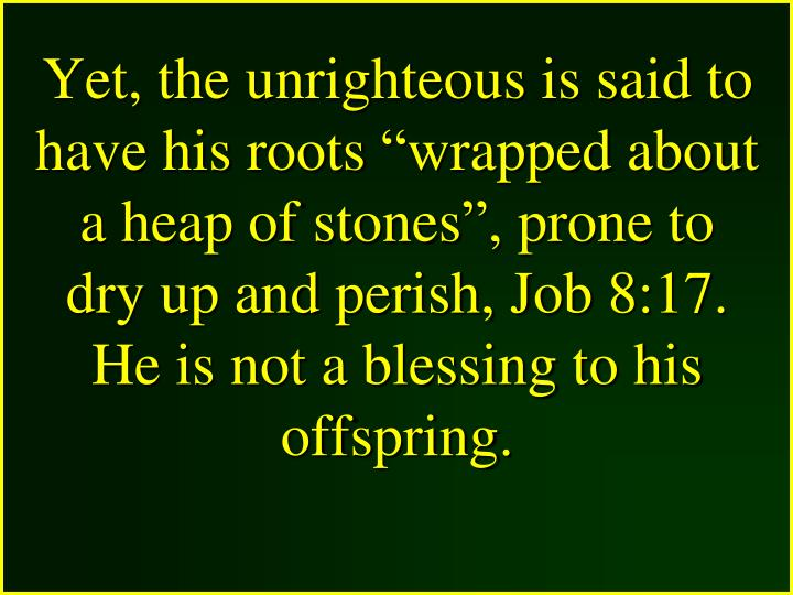"""Yet, the unrighteous is said to have his roots """"wrapped about a heap of stones"""", prone to dry up and perish, Job 8:17."""