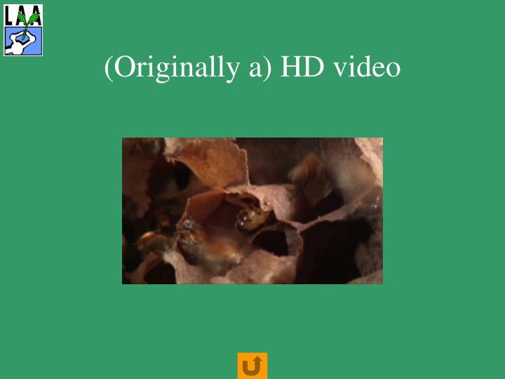 (Originally a) HD video