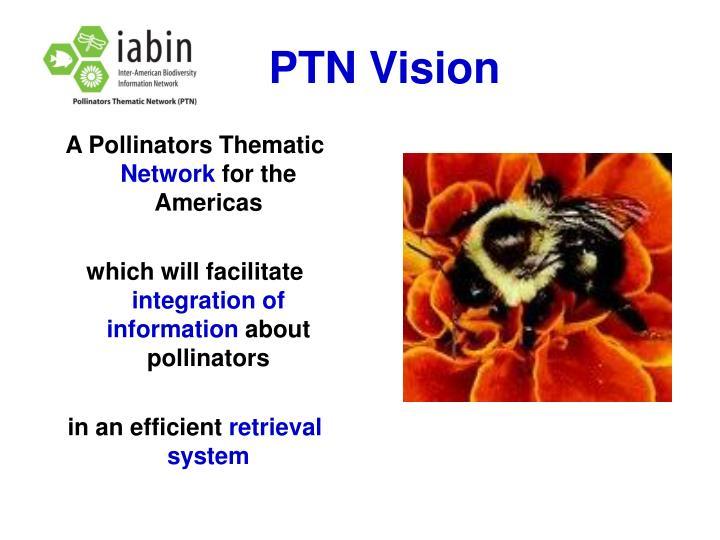 PTN Vision