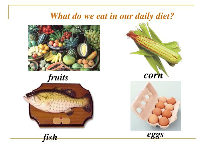 What do we eat in our daily diet?