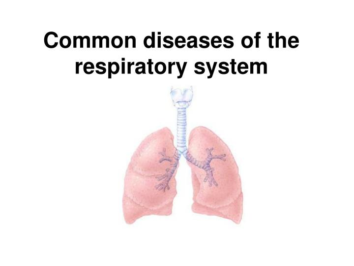 common diseases of the respiratory system n.
