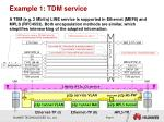 example 1 tdm service