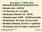example 1 eeg data