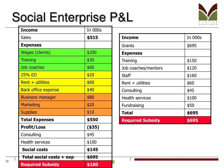 Social Enterprise P&L
