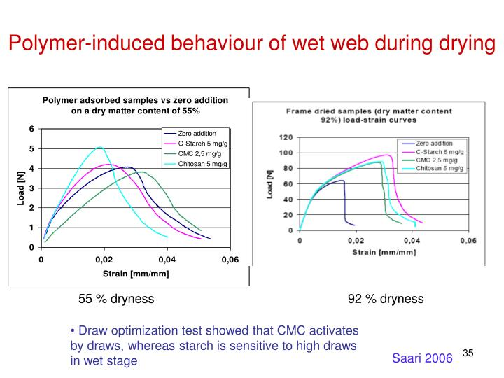 Polymer-induced behaviour of wet web during drying