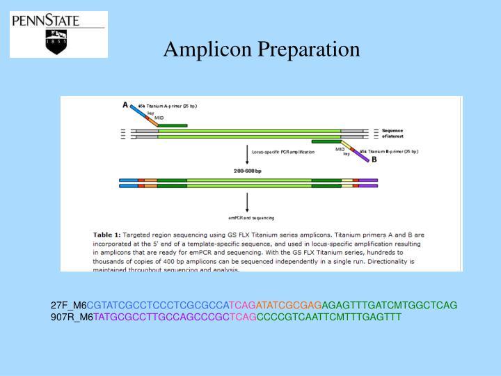 Amplicon Preparation