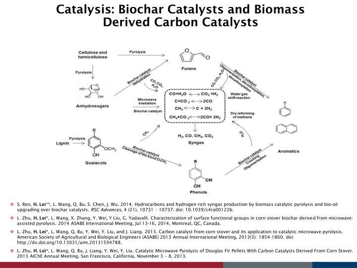 Catalysis: Biochar Catalysts and Biomass Derived Carbon Catalysts