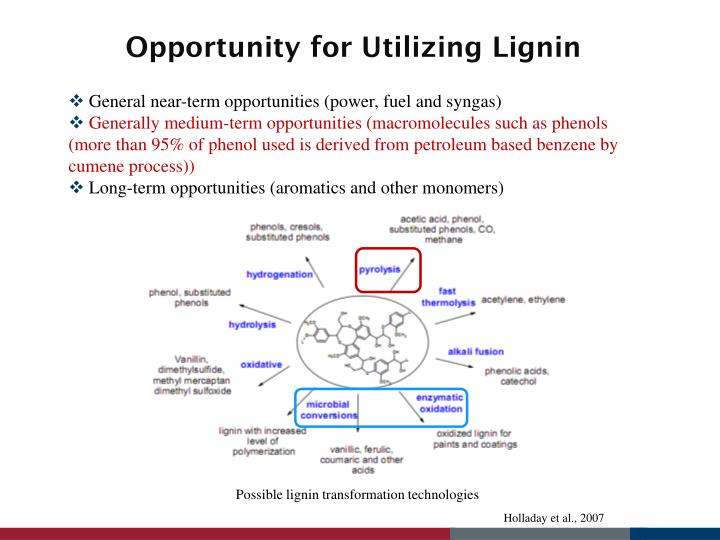 Opportunity for Utilizing Lignin