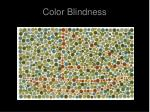 color blindness1