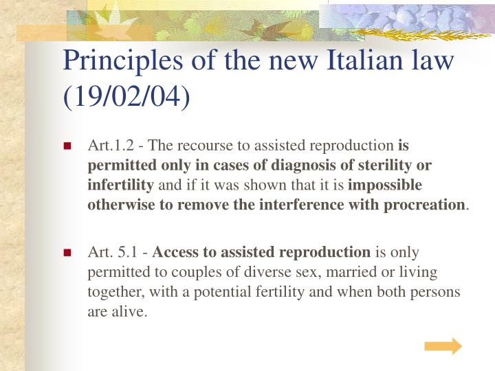 Principles of the new italian law 19 02 04