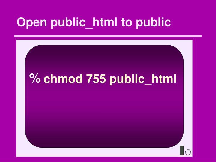 Open public_html to public