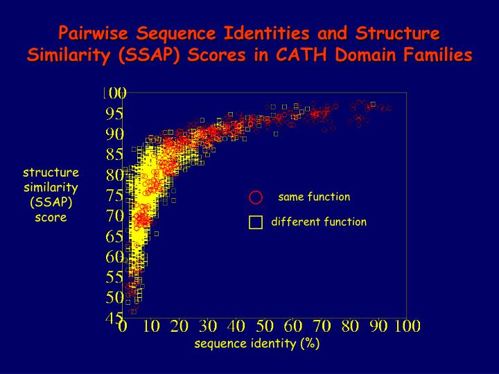 Pairwise Sequence Identities and Structure Similarity (SSAP) Scores in CATH Domain Families