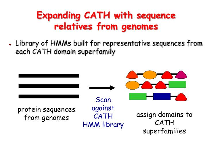 Expanding CATH with sequence relatives from genomes