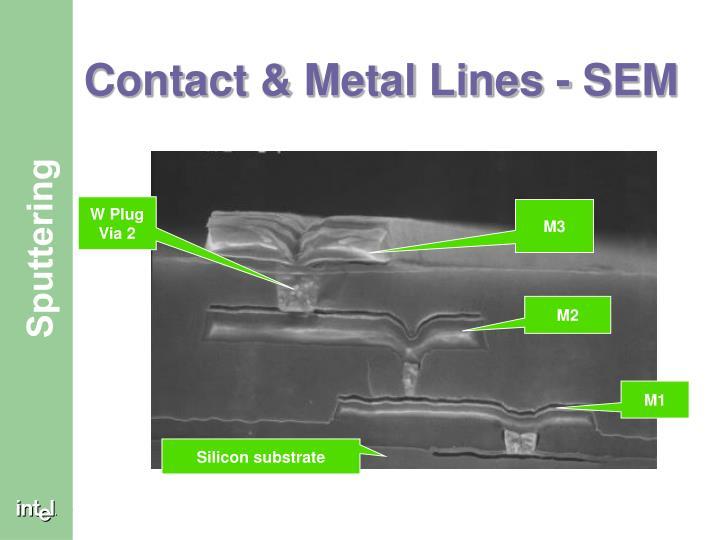 Contact metal lines sem