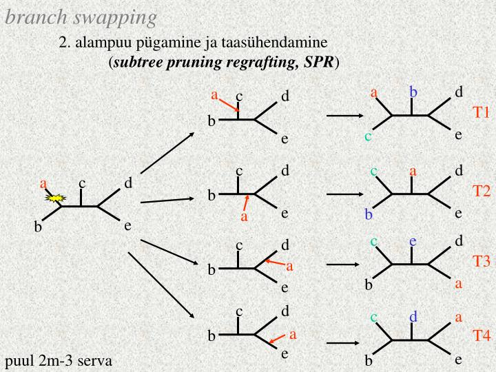 branch swapping