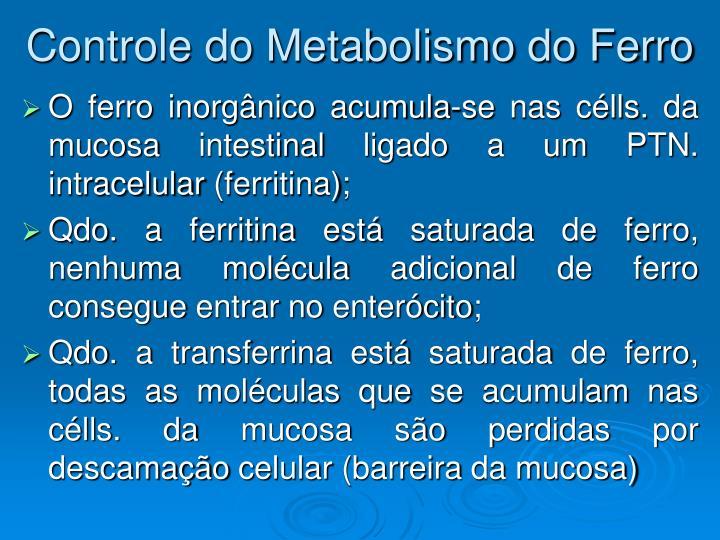 Controle do Metabolismo do Ferro