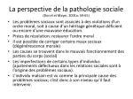 la perspective de la pathologie sociale dorvil et mayer 2001a 59 65