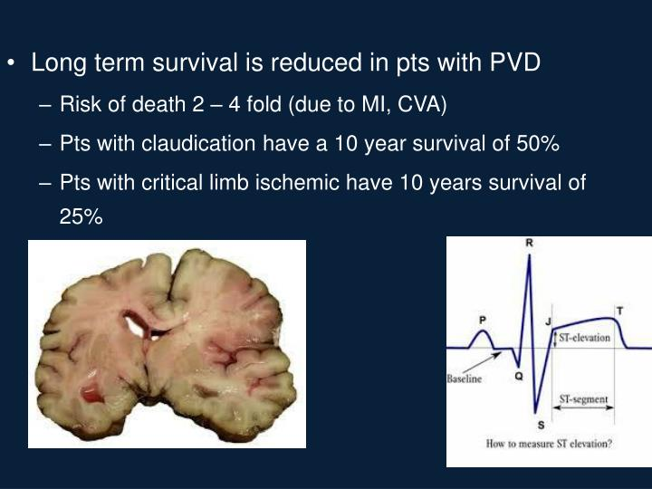 Long term survival is reduced in pts with PVD