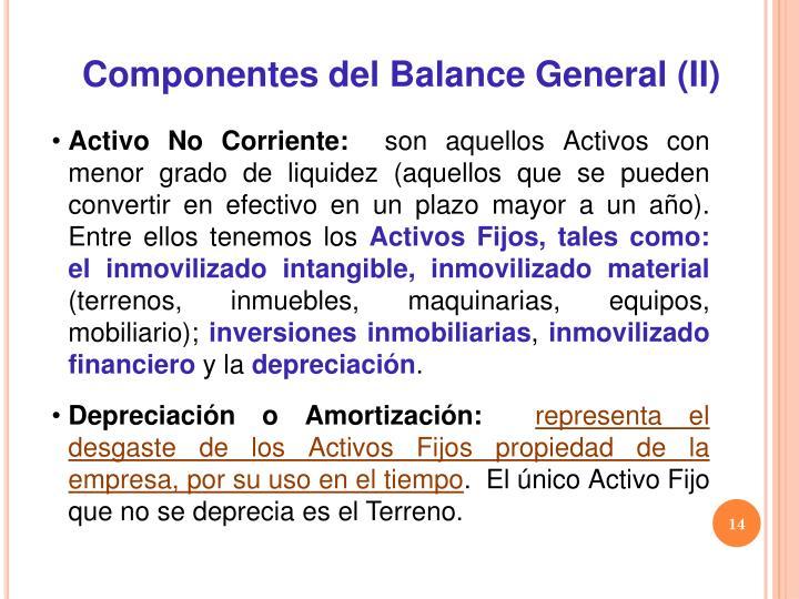 Componentes del Balance General (II)