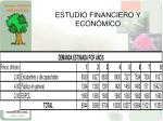 estudio financiero y econ mico