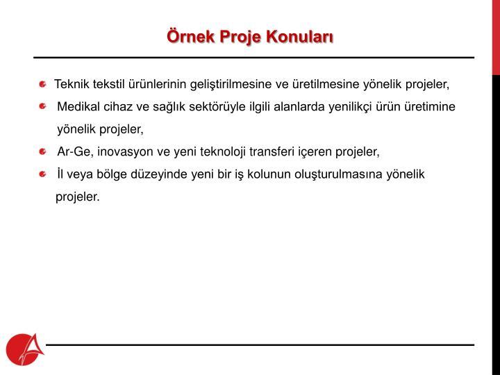 Örnek Proje Konuları