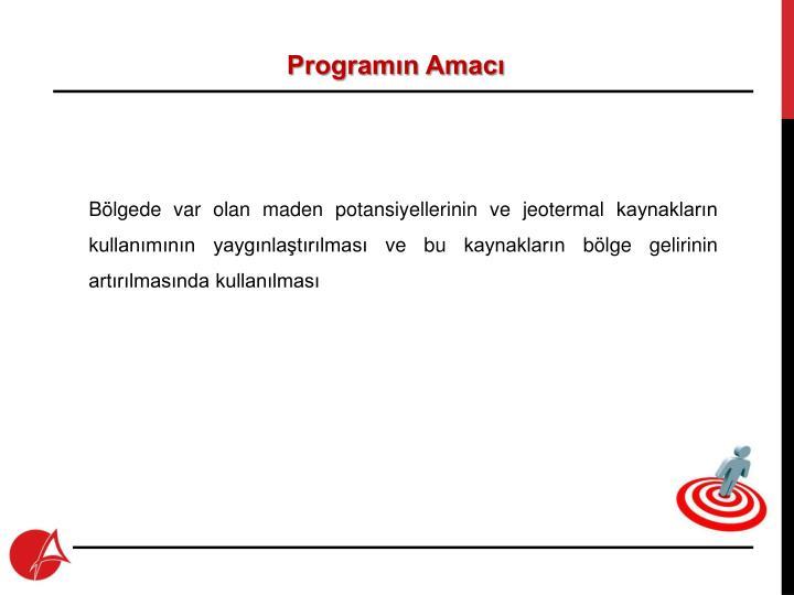 Programın Amacı