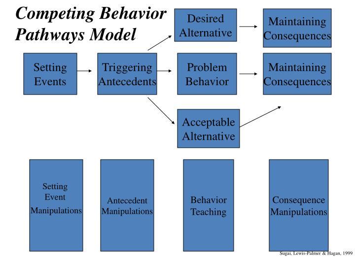 Competing Behavior Pathways Model
