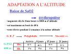 adaptation a l altitude5