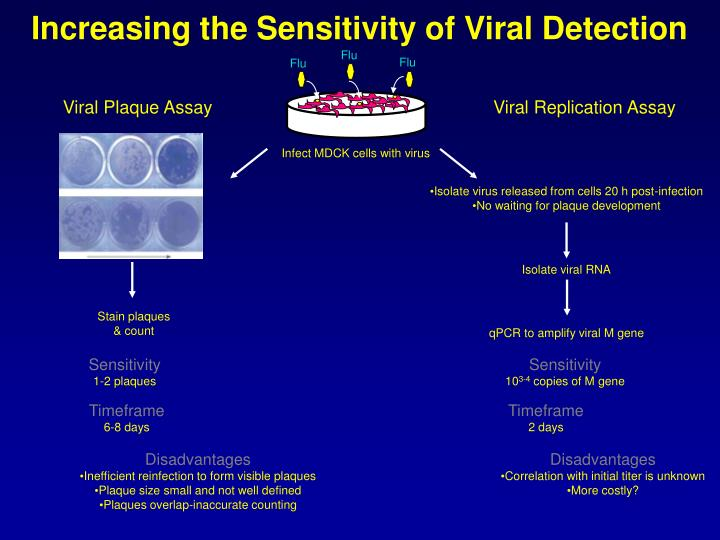 Increasing the Sensitivity of Viral Detection