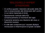 wildshield wiper syndrome