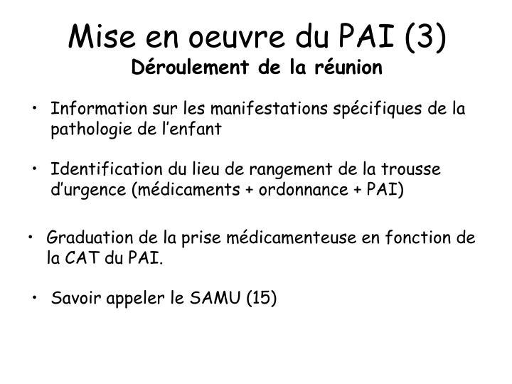 Mise en oeuvre du PAI (3)