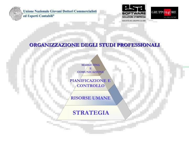 ORGANIZZAZIONE DEGLI STUDI PROFESSIONALI
