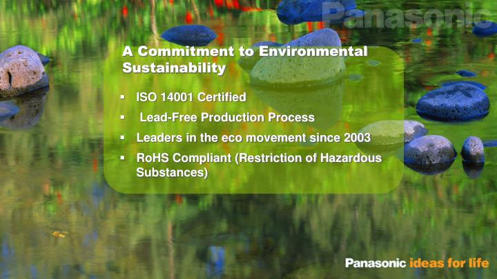 A Commitment to Environmental Sustainability