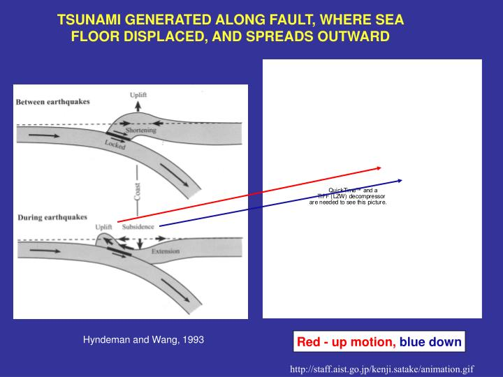 TSUNAMI GENERATED ALONG FAULT, WHERE SEA FLOOR DISPLACED, AND SPREADS OUTWARD