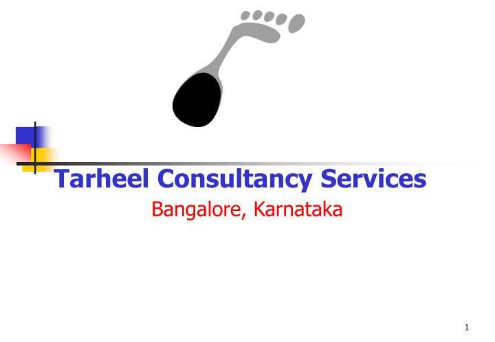 tarheel consultancy services n.